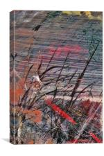 Koi Carp refraction, Canvas Print