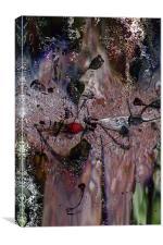 Hawthorn, Canvas Print