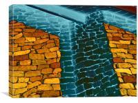 Light heel, Canvas Print