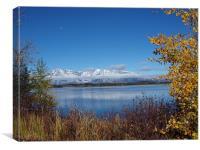 across the lake, Canvas Print