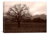 Moody tree, Canvas Print