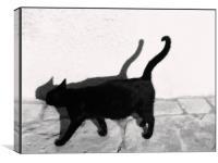 Cat walk, Canvas Print