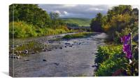 The Beamish River Valley, Chevioy Foothills, Canvas Print