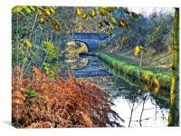 Late Autumn on the Shropshire Union, Canvas Print
