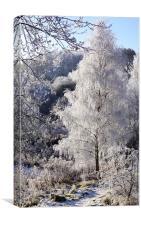 Crystal Tree, Canvas Print