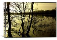 Mirror Image, Canvas Print
