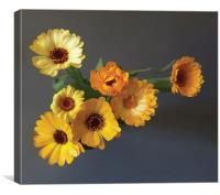 Gerbera bouquet, Canvas Print