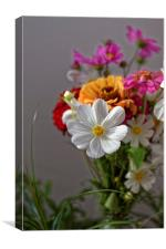 Bouquet of field flowers, Canvas Print