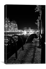 Salford Steps & Cleats, Canvas Print