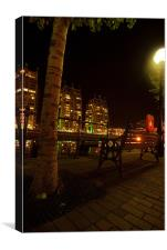 Tree At Salford Quays By Night, Canvas Print