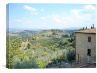 Tuscan Hills  - San Gimignano, Canvas Print