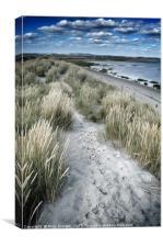 West Wittering Beach Sand Dunes & Grass, Canvas Print