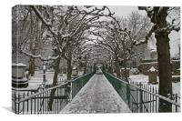 Bird Cage Walk In Snow, Canvas Print