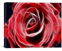 Red Rose Light, Canvas Print