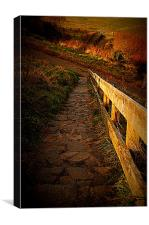 Country Steps, Canvas Print