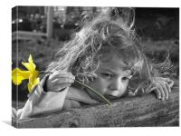 Daffodil of Discovery, Canvas Print