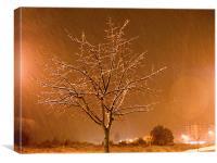 Snowy, Canvas Print
