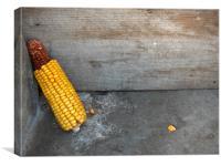 A corn spike, Canvas Print