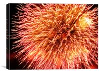 Bright and Colourful Firework, Canvas Print
