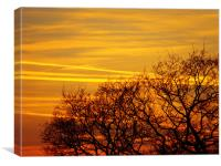Orange Sunset, Canvas Print