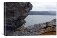 Peeking From Behing the Rocks, Canvas Print