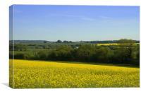 Dorset Countryside, Canvas Print