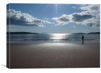 Scottish Horizon