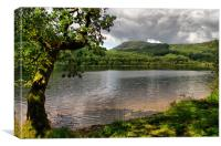 By The Side of Loch Ard, Canvas Print