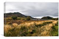Loch Ruthven RSPB reserve, Canvas Print