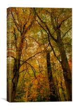 Abstract Trees, Canvas Print