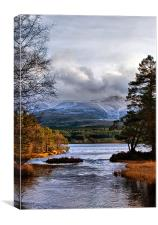 The Coming of Winter to the Cairngorms, Canvas Print