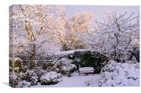 Garden in Snow, Canvas Print