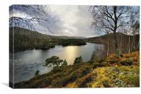Glen Affric in Winter, Canvas Print