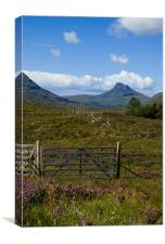 The Path to Stac Pollaidh, Canvas Print