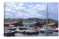 Fishing Boats in Scotland, Canvas Print
