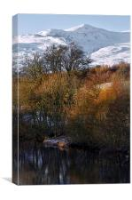 Glen Strathfarrar in February, Canvas Print