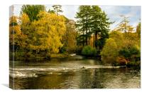River Ness Islands, Canvas Print