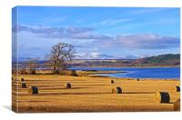 The Beauly Firth and Ben Wyvis, Canvas Print