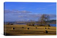 Ben Wyvis and the Beauly Firth, Canvas Print