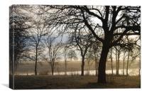 Oaks at Seven Lakes