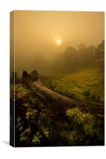 Misty Day, Canvas Print