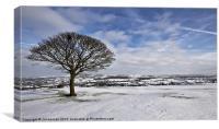 A Snowy  Biddulph Moor., Canvas Print