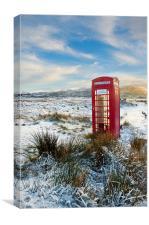 Forgotten Phone Box, Canvas Print