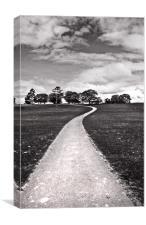 Stroll Down The Path, Canvas Print