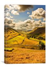 The Fells Of Howtown., Canvas Print