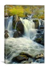 Swallow Falls, Canvas Print