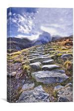 A Path Through The Mountains, Canvas Print