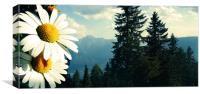 Austrian Dream, Canvas Print