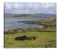 Meenacross meadow, Canvas Print