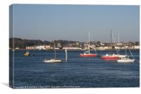 Portaferry, Strangford Lough, Canvas Print